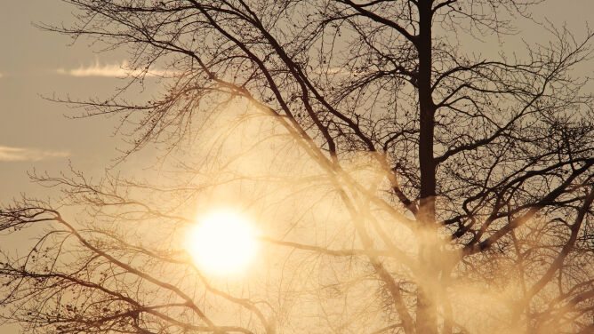 Pogoda na 5 dni: z każdym dniem coraz chłodniej