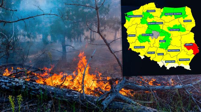 """""""Las się nie obroni"""". Duże ryzyko pożarowe"""