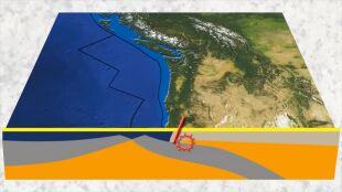 """""""Mam nadzieję, że nauka się myli"""". Megatrzęsienie ziemi zatopi wybrzeże USA"""