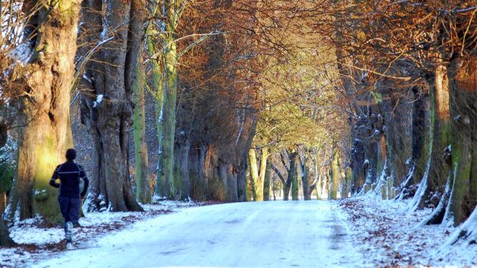 Bieganie zimą. Rady dla początkujących