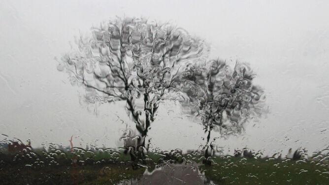 Prognoza pogody na dziś: deszcz i ciepło jak na styczeń