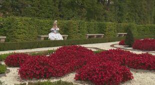 Królewskie ogrody w Wilanowie (odc. 525)